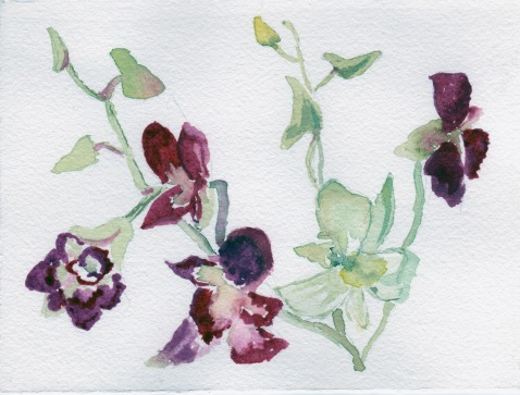 Priscilla did this watercolor sketch that summer in a painting group organized by her artist friend.